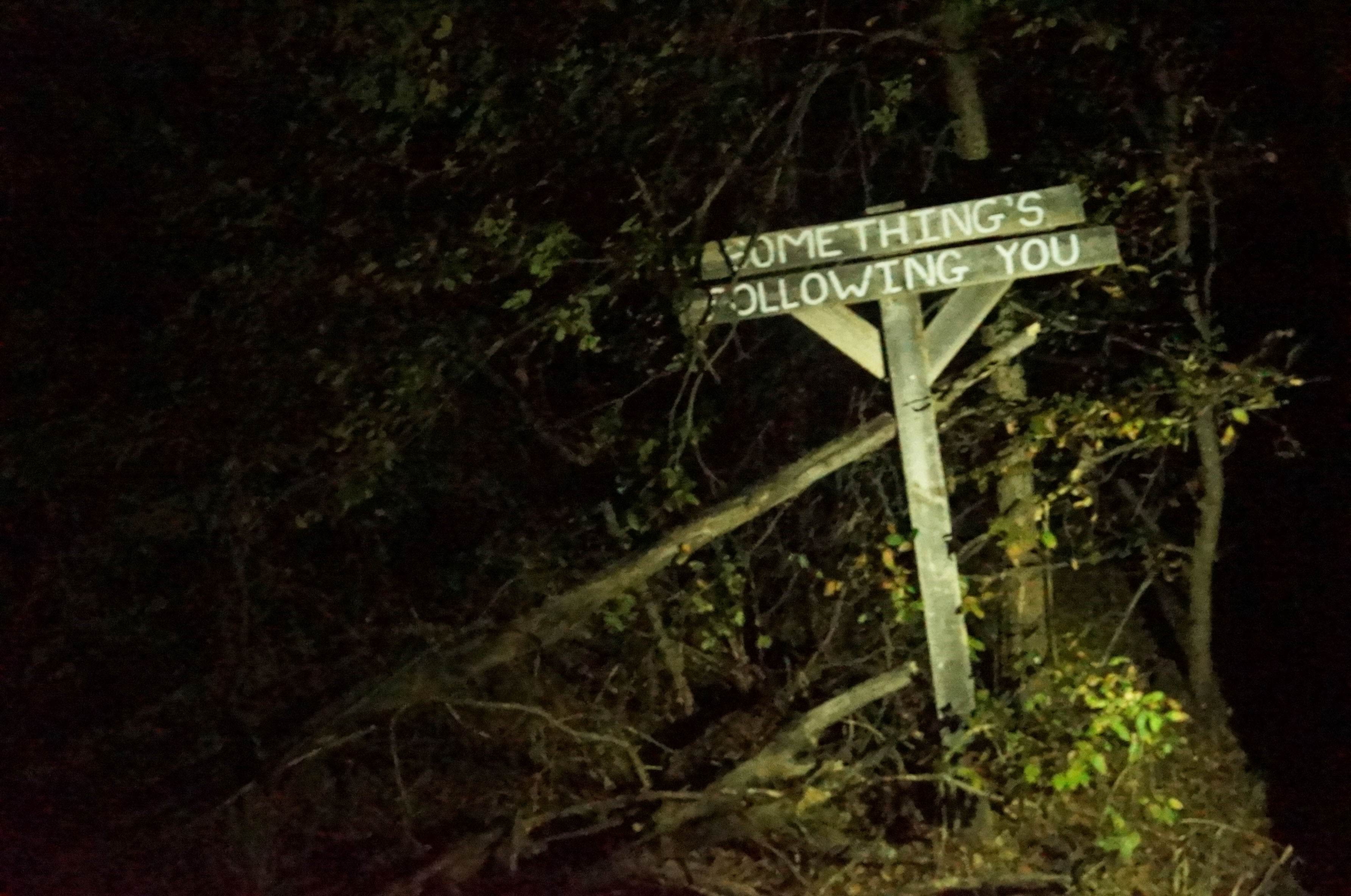 Outdoor Haunted Trail